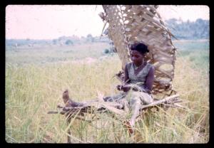 Woman plaiting mats