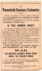 Twentieth century calamity. Peace Committee 1912