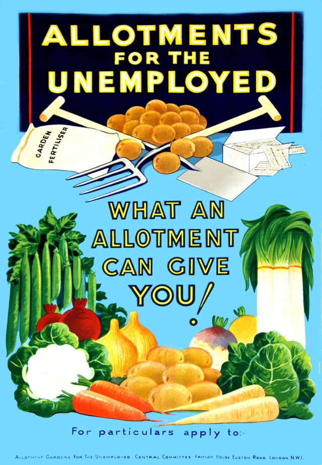 Allotments for the unemployed: what an allotment can give you!