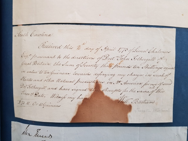 Receipt for plant collecting payment signed by William Bartram